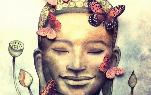 borboletas-500x316